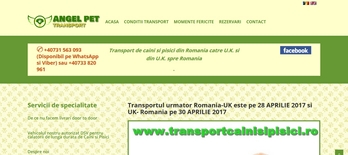 https://www.transportcainisipisici.ro